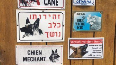 Im Bayrischen Wald: Zenting – Hundsruck